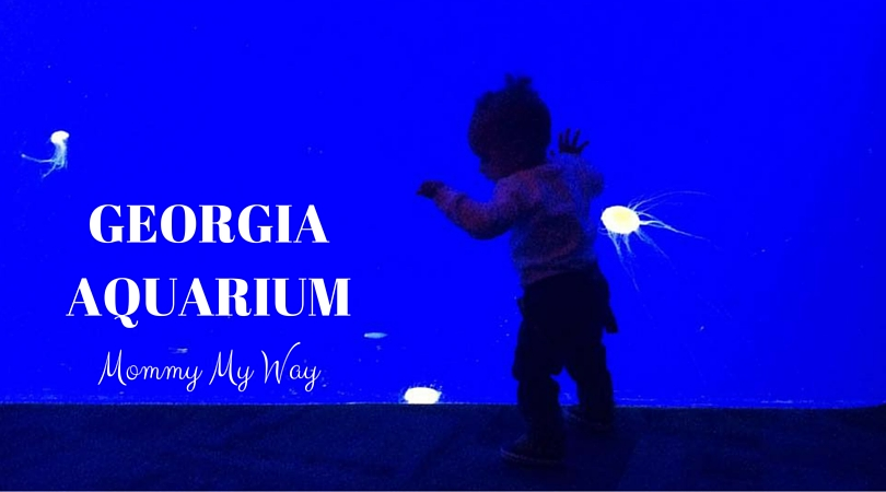 A trip to the Georgia Aquarium