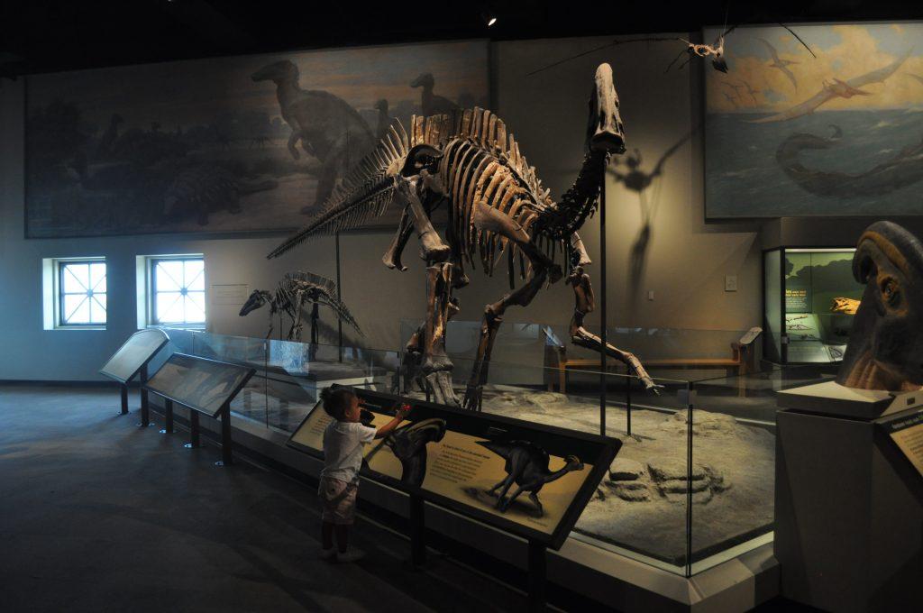 Field Museum Dinosaurs